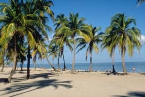 Miami_Winter