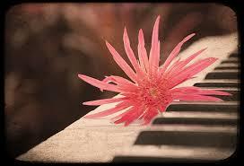 music beauty